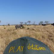 2017 07 Afrique du sud Elephants