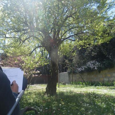 2015 05 écriture au jardin